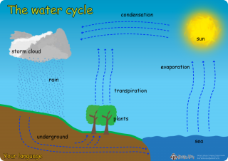 Water cycle poster batchelor institute press online store water cycle poster ccuart Gallery